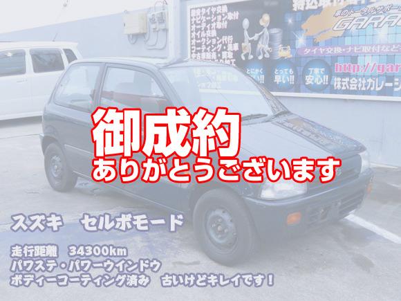 garage_sd_cervo5